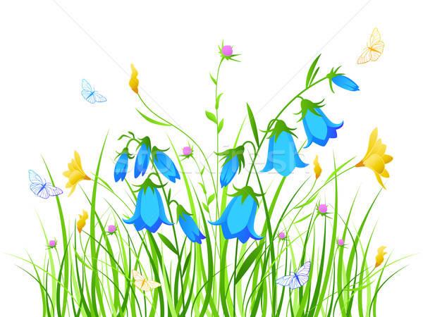 Floral azul flores amarelas vetor grama natureza Foto stock © Artspace
