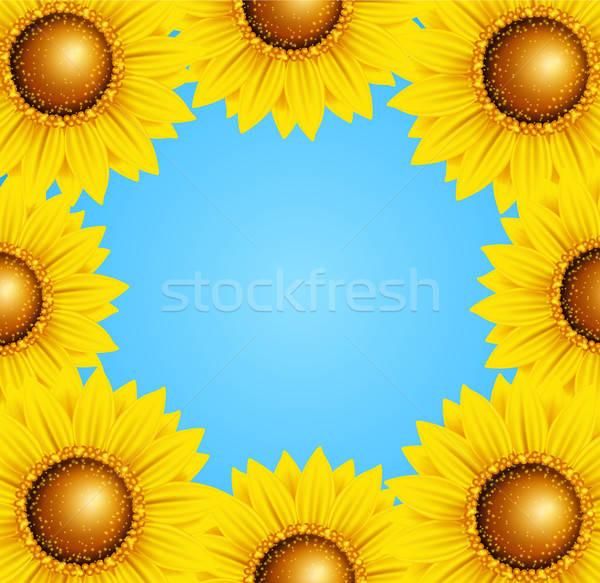 Foto stock: Floral · quadro · girassóis · decorativo · vetor · verão