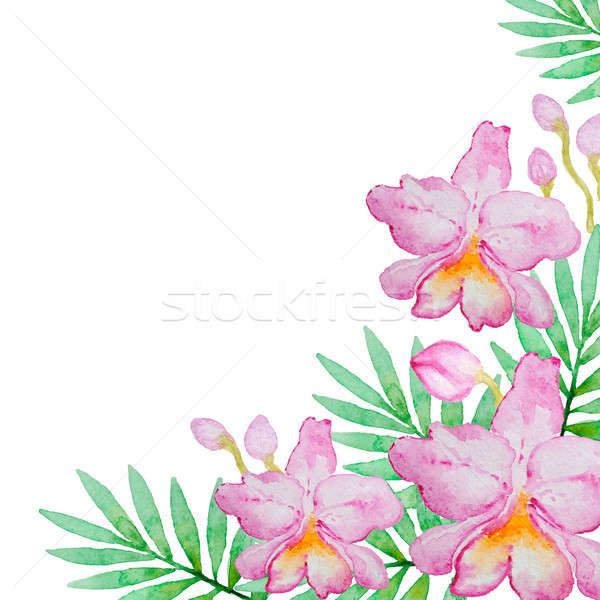 Pink orchids and green leaves Stock photo © Artspace
