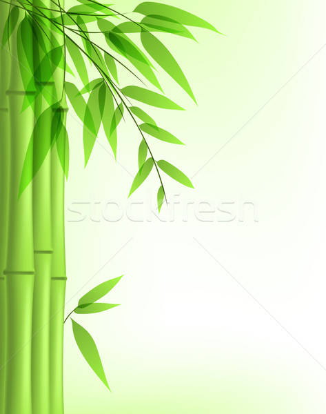 green bamboo Stock photo © Artspace