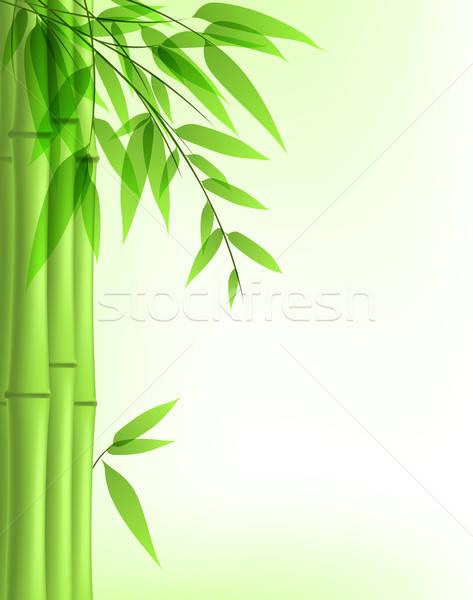 Groene bamboe vector achtergrond zomer plant Stockfoto © Artspace