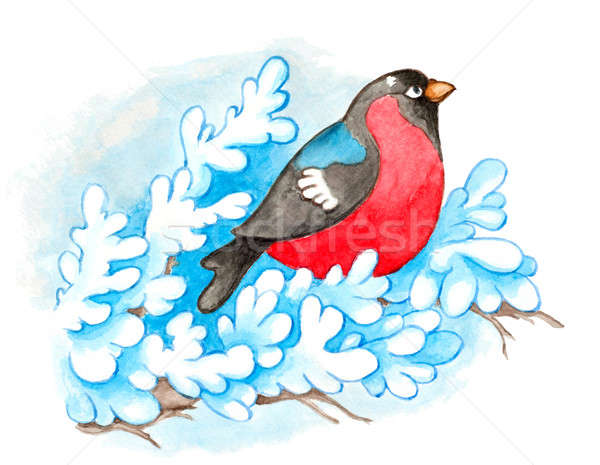Christmas background with bullfinch Stock photo © Artspace