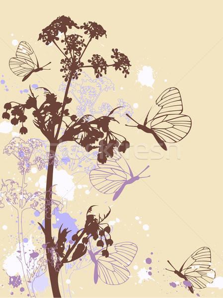 Foto stock: Flores · mariposas · primavera · mariposa · diseno · fondo