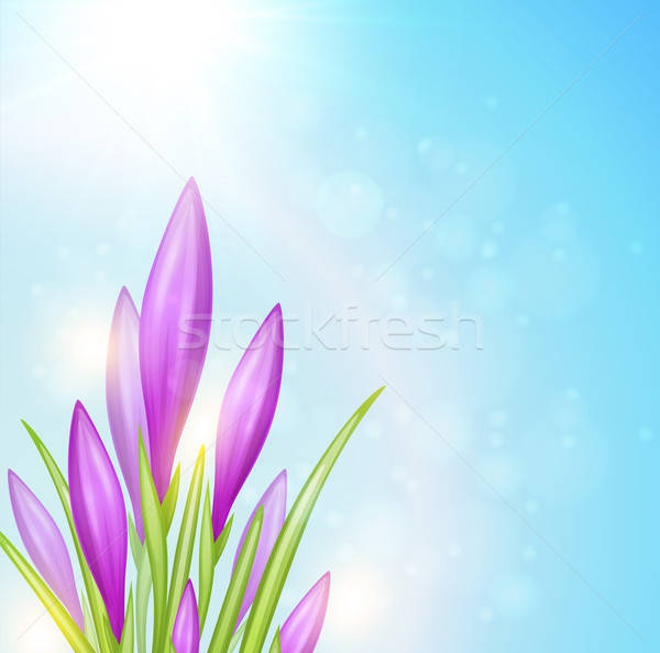 Spring background Stock photo © Artspace
