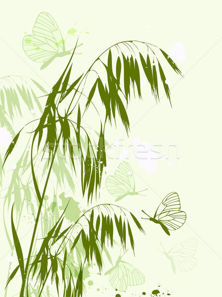 Green oat and butterflies Stock photo © Artspace