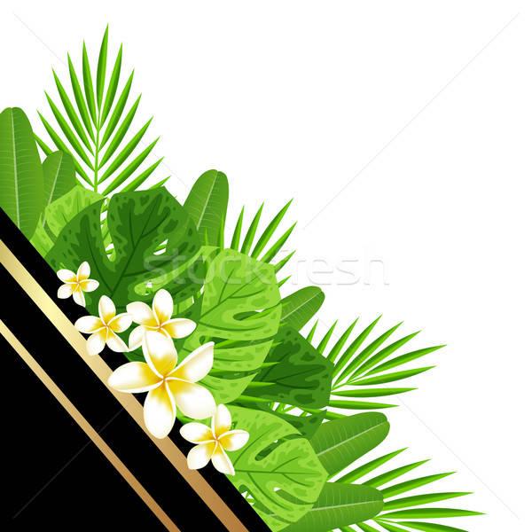 Dekoratív nyár zöld levelek trópusi virágok virág Stock fotó © Artspace