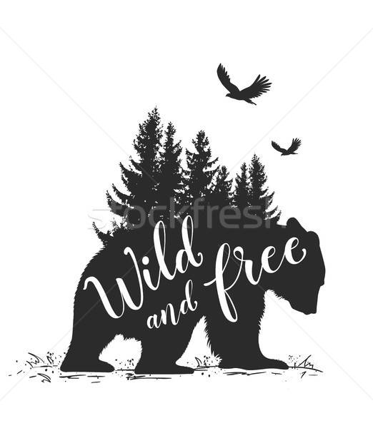 Bear and fir tree Stock photo © Artspace