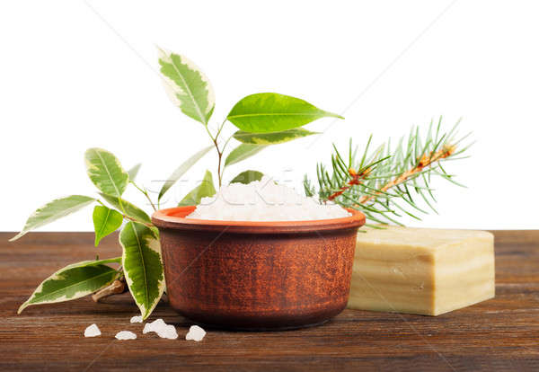 Salt and green leaves  Stock photo © Artspace