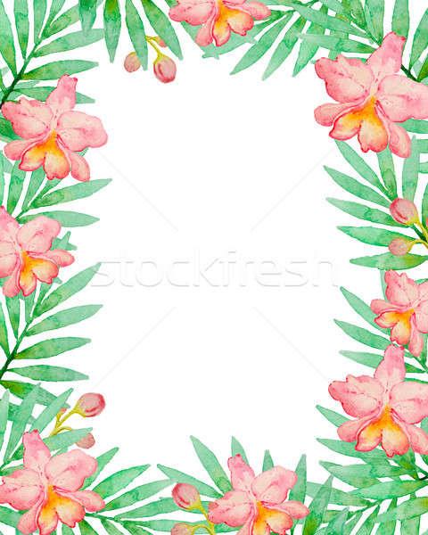 Foto stock: Floral · quadro · rosa · aquarela · orquídeas · verde