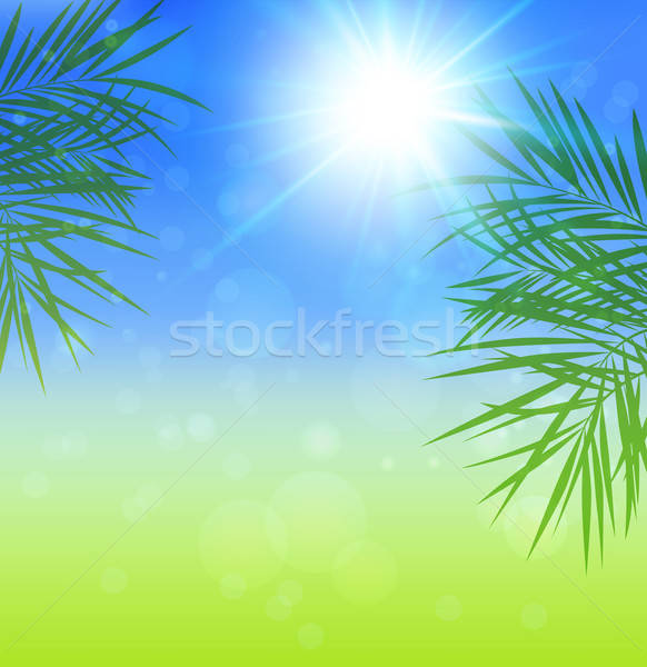 Summer background Stock photo © Artspace