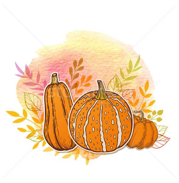 Orange pumpkins and watercolor texture Stock photo © Artspace