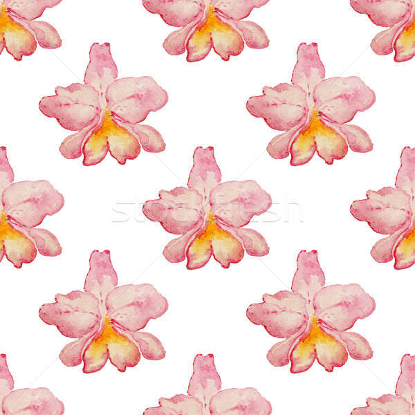 Foto stock: Tropical · padrão · orquídeas · aquarela · rosa