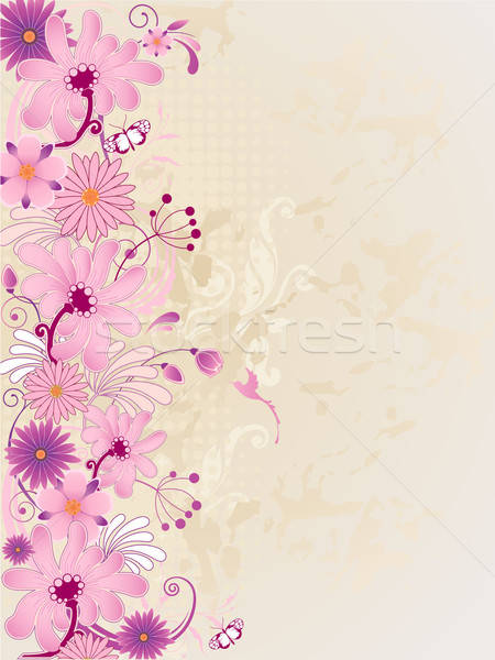 Rosa flores vetor retro floral borboleta Foto stock © Artspace