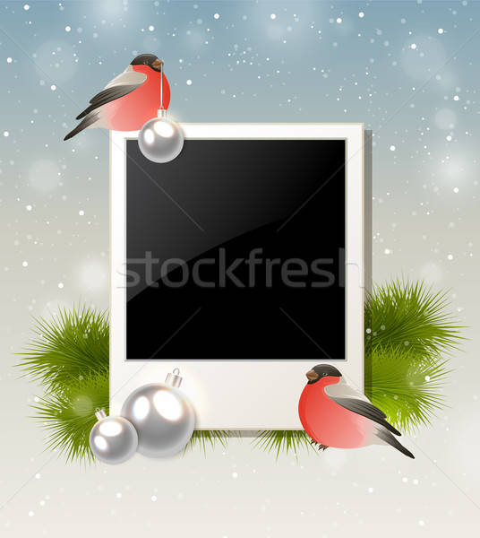 Bullfinch and photo Stock photo © Artspace