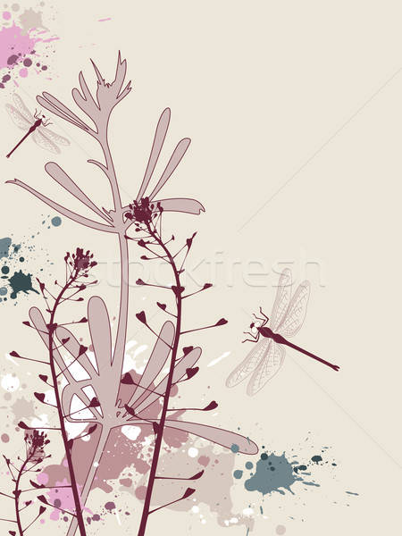 Grunge flores libélula efeito primavera grama Foto stock © Artspace