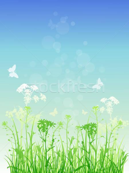 Virágmintás zöld fű vektor pillangók tavasz fű Stock fotó © Artspace