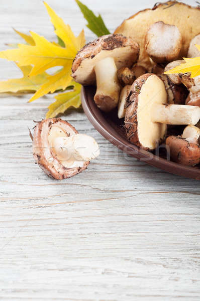 Mushrooms and leaves in plate. Stock photo © Artspace