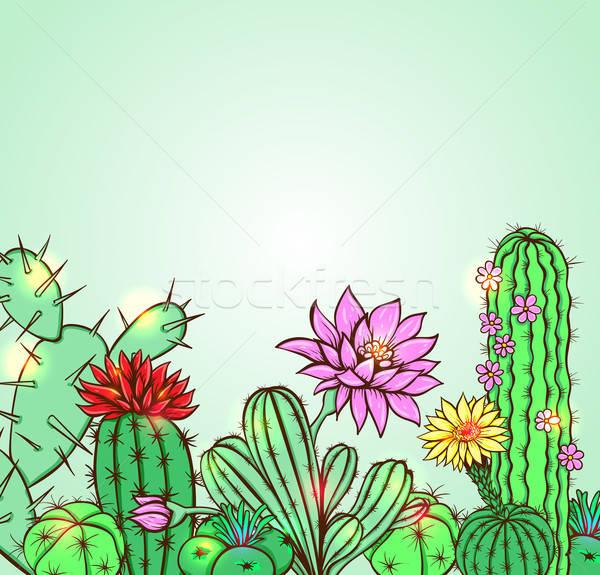 サボテン 緑 手描き 花 庭園 背景 ストックフォト © Artspace