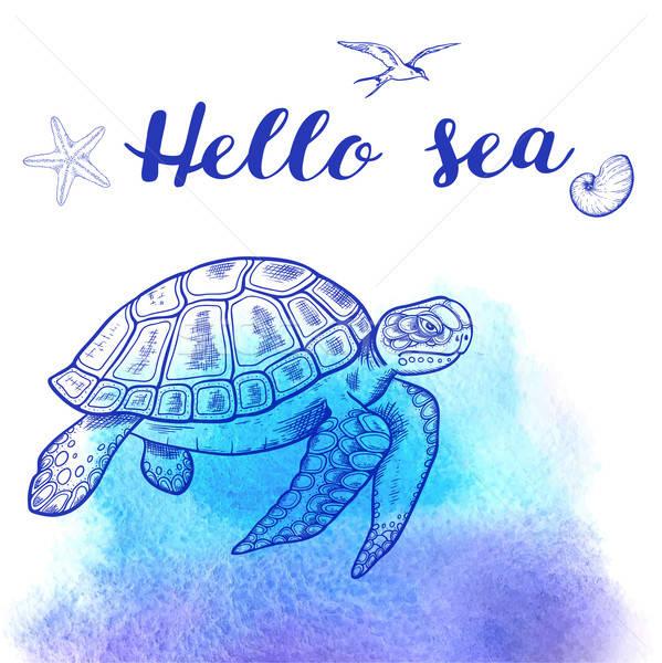 Mare tartaruga blu vettore acquerello Foto d'archivio © Artspace