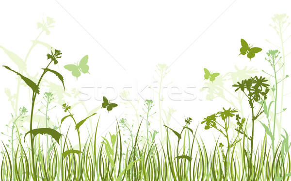Foto stock: Verde · floral · vector · mariposas · naturaleza · campo