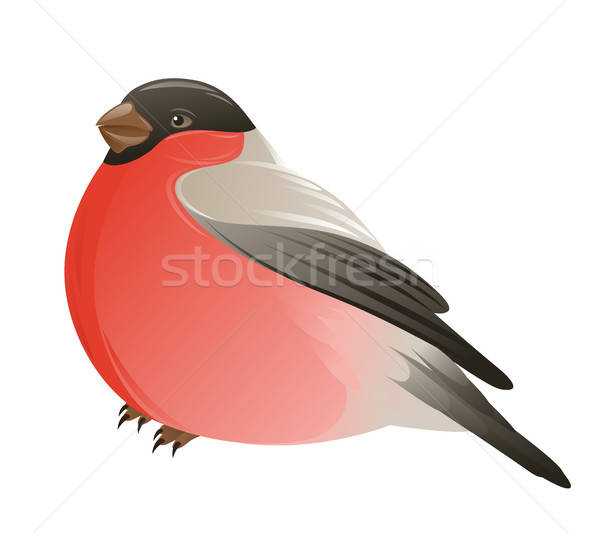 Bullfinch on a white background Stock photo © Artspace