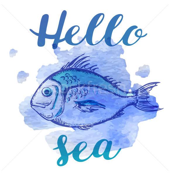 Tengeri nyár hal kézzel rajzolt kék vízfesték Stock fotó © Artspace