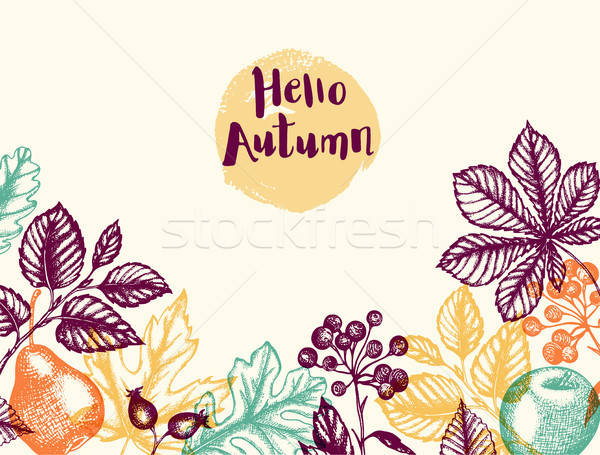 Autumn background with leaves and fruits Stock photo © Artspace
