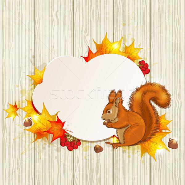 Pluizig eekhoorn esdoorn bladeren najaar Rood Stockfoto © Artspace