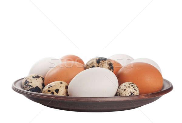 Tyúk tojások agyag tányér izolált fehér Stock fotó © Artspace