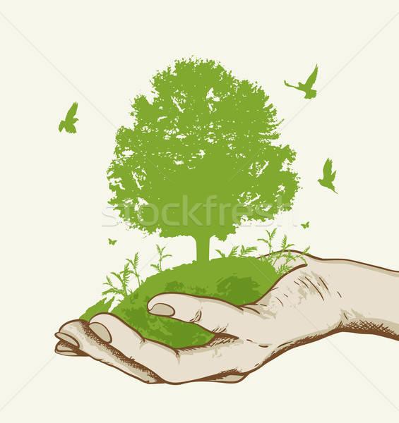 Zöld fa kéz madarak ökológia fa pillangó Stock fotó © Artspace