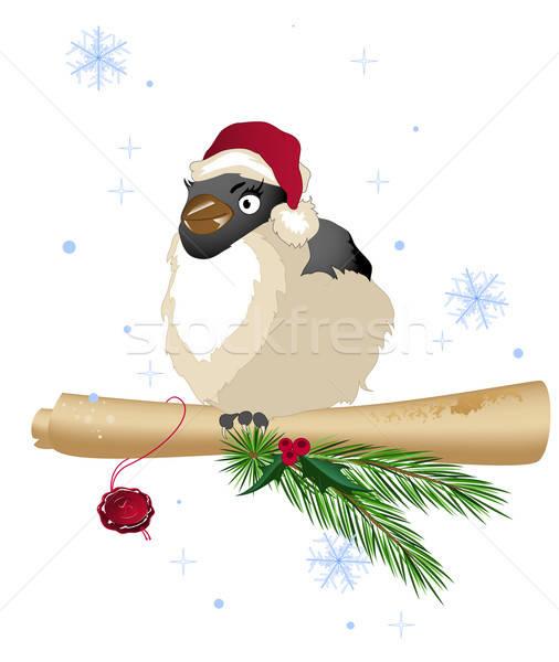 Stock fotó: Karácsony · madár · fenyőfa · ág · öreg · tekercs