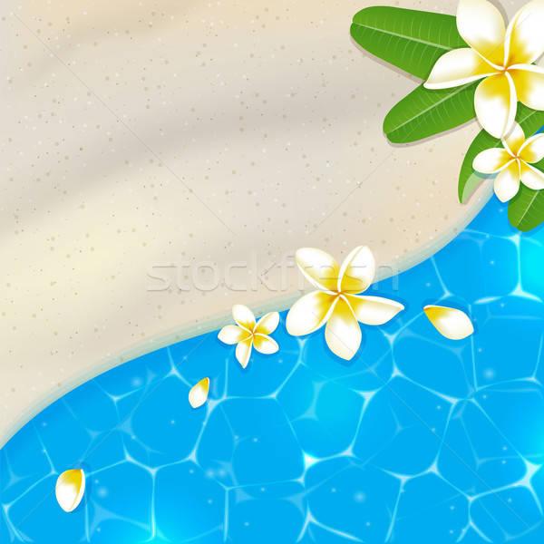 Homokos tengerpart kék tenger víz trópusi vektor Stock fotó © Artspace