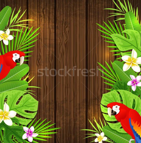 Groene tropische bladeren Rood papegaaien bloemen Stockfoto © Artspace