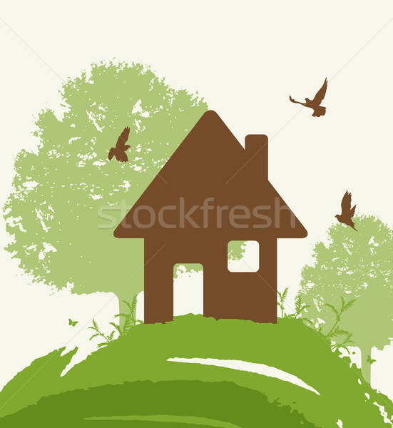 Eco-friendly house Stock photo © Artspace