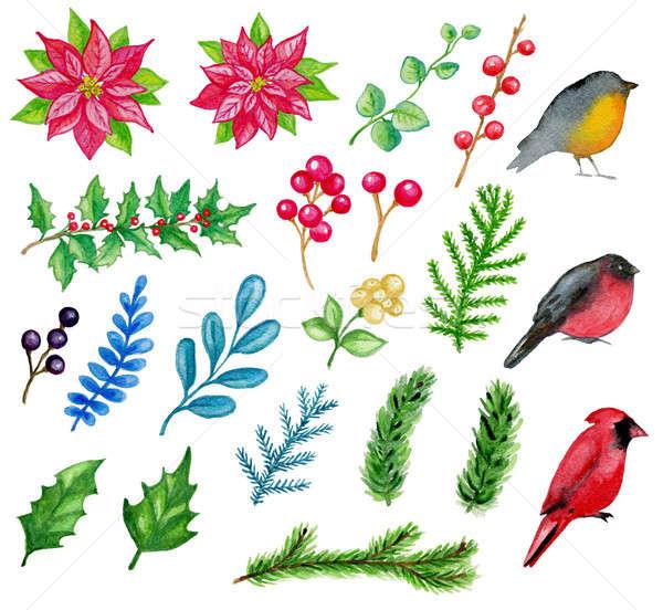 Wasserfarbe Weihnachten Design Elemente Set Hand gezeichnet Stock foto © Artspace