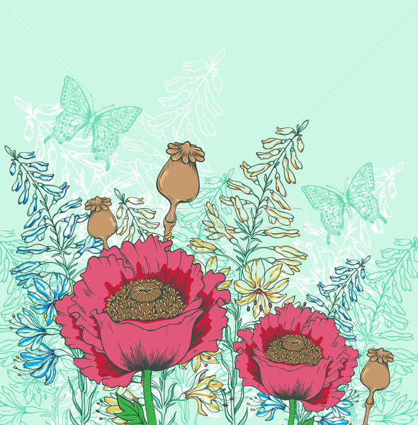 Foto stock: Vermelho · papoula · flores · borboletas · verde · borboleta