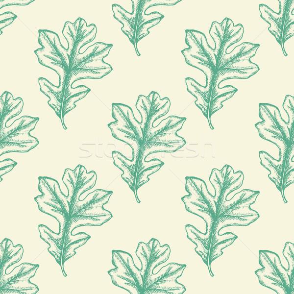 Groene eiken bladeren najaar Stockfoto © Artspace