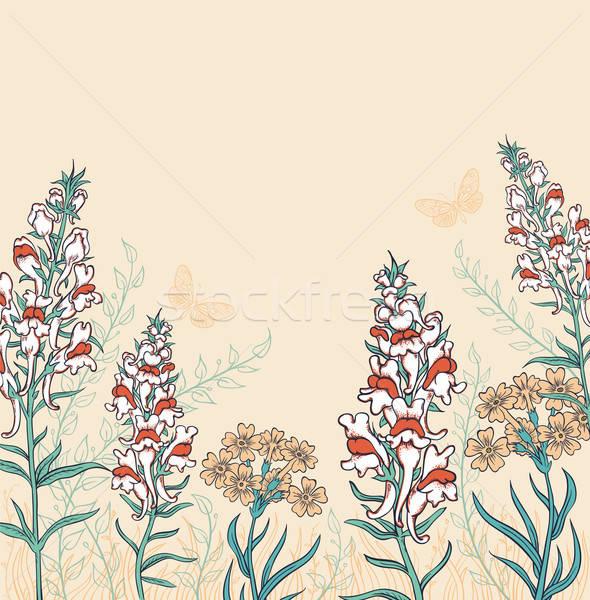 Vadvirágok pillangók dekoratív vektor virág pillangó Stock fotó © Artspace