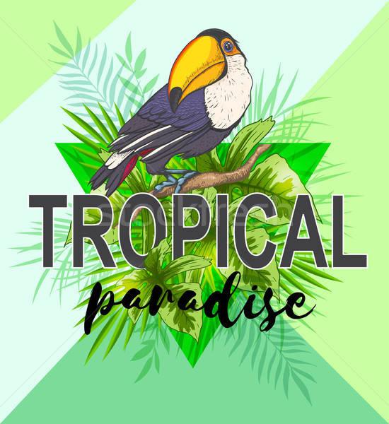 Feuilles de palmier oiseau vert triangle résumé tropicales Photo stock © Artspace
