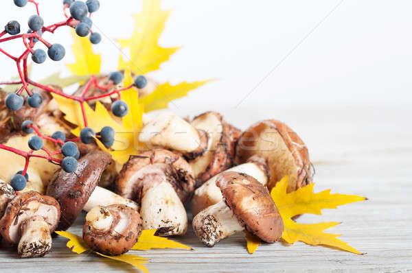 Autumn still life with forest mushrooms Stock photo © Artspace