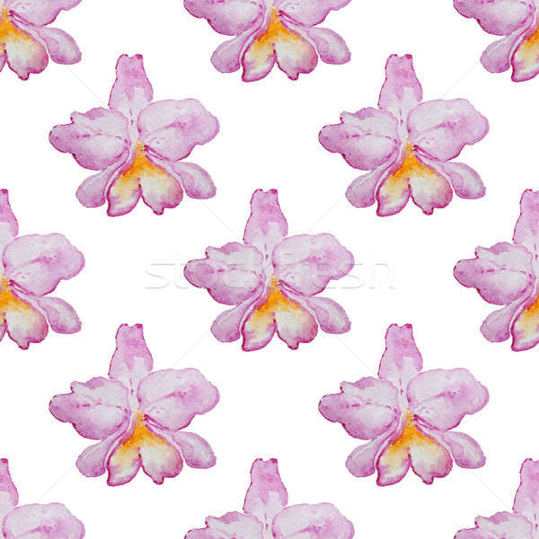 Foto stock: Padrão · rosa · orquídeas · tropical · aquarela