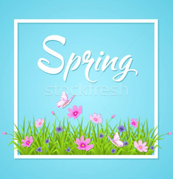 Azul primavera hierba verde mariposa fondo marco Foto stock © Artspace