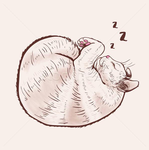 ストックフォト: かわいい · 寝 · 猫 · 手描き