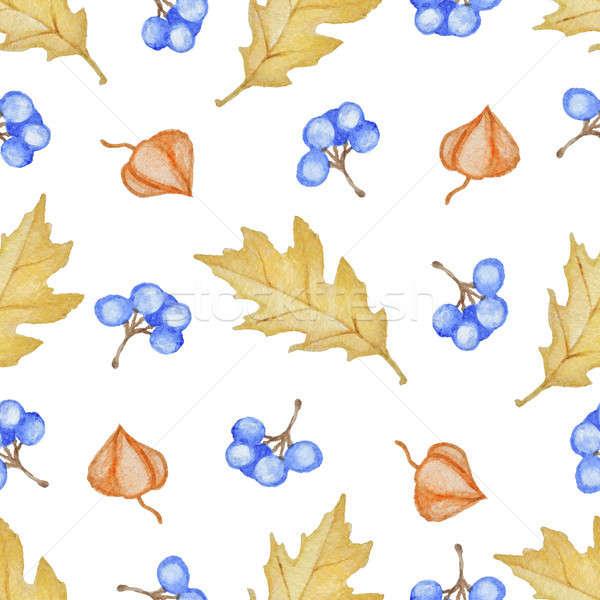 Tölgy levelek kék bogyók virágmintás vízfesték Stock fotó © Artspace