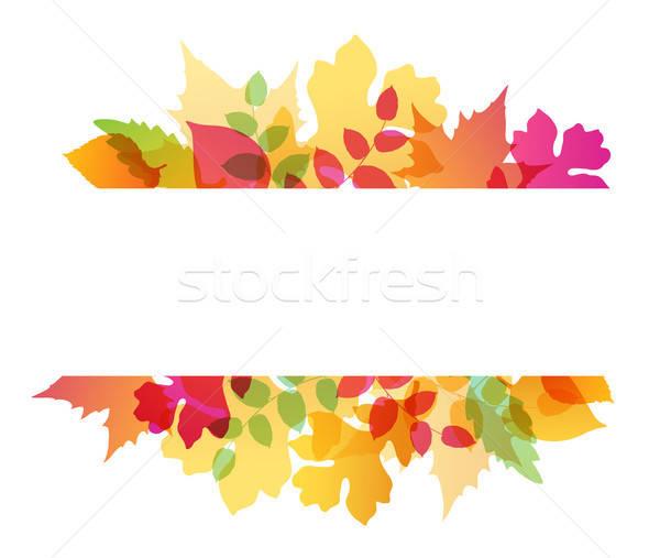 Absztrakt ősz fényes zuhan tölgy juhar Stock fotó © Artspace