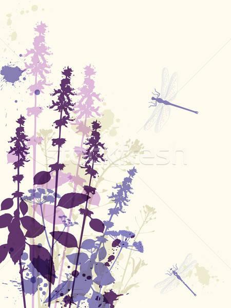 Violeta flores libélula abstrato floral primavera Foto stock © Artspace