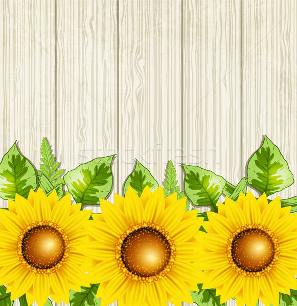 Summer background with sunflowers Stock photo © Artspace