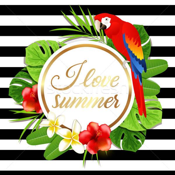 夏 バナー 赤 オウム 熱帯 緑 ストックフォト © Artspace