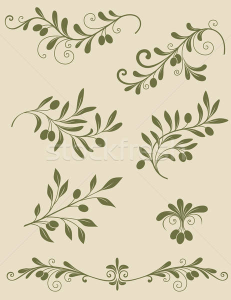 Decorative olive branch Stock photo © Artspace