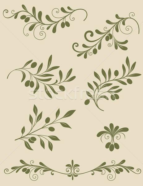 Décoratif olive branche vecteur vintage alimentaire Photo stock © Artspace